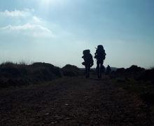 Group walking 2